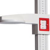 Height Measure Rods